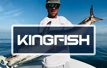 Kingfish-Category